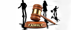 Family law yearly round-up 2017
